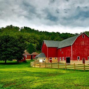 Farm & Agriculture